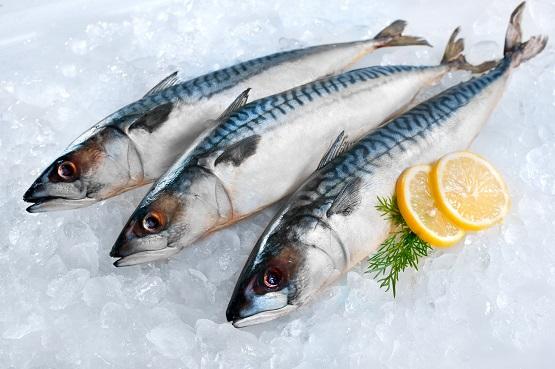 Свежая рыба в москве купить с доставкой